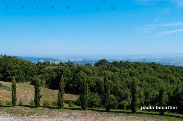 Uno dei bei panorami che circonda l'Azienda Vinicola Corte Pavone