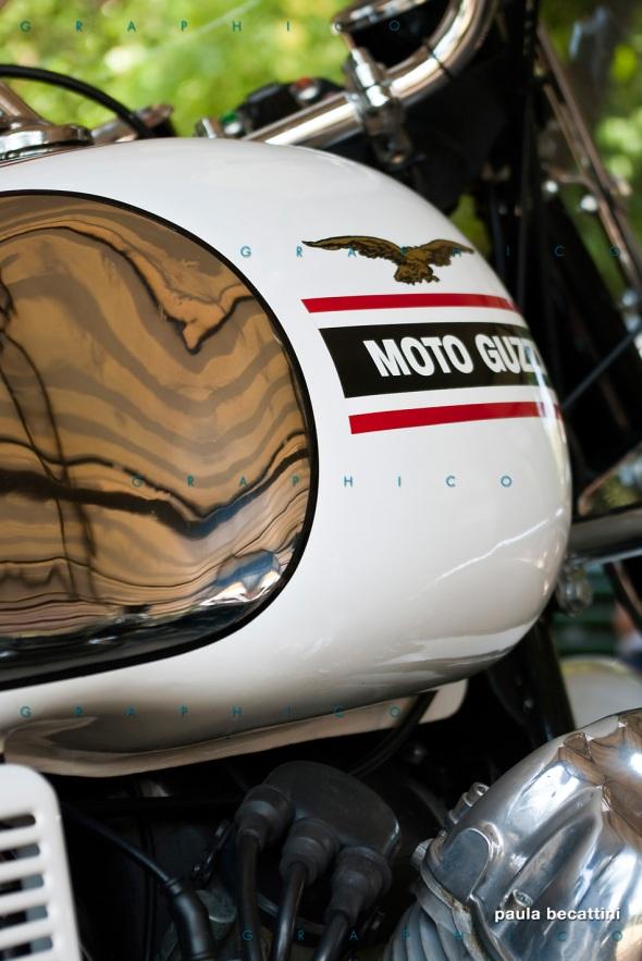 Il mio serbatoio V7 Special - Moto Guzzi