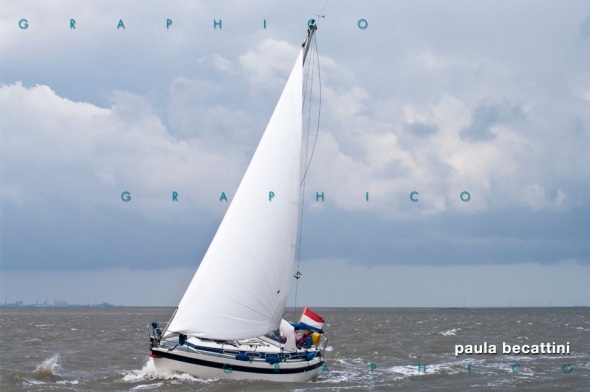 Olanda: mare del nord